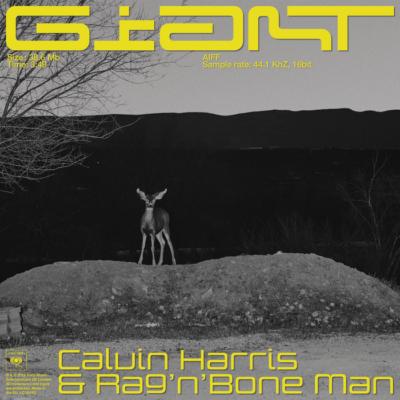 Calvin Harris And Rag'n'Bone Man – Giant
